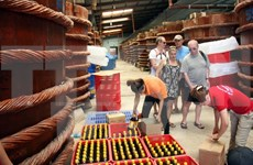 Vietnam: Cien por ciento de muestras de salsas de pescado son seguras