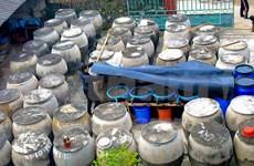 [Fotos] Aldea de producción de salsa de pescado en Thanh Hoa, Vietnam