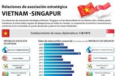 [Infografia] Relaciones de asociación estratégica Vietnam- Singapur