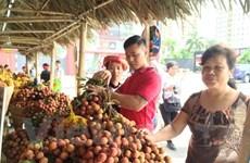 [Fotos] Semana de lichi en Hanoi