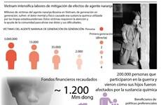 Vietnam intensifica labores de mitigación de efectos de agente naranja