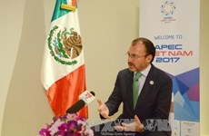 Canciller mexicano evalúa priopridades trazadas por Vietnam para APEC 2017
