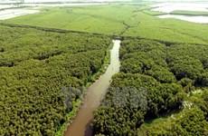 Aldea flotante Tan Lap, escapada ideal en el delta del río Mekong