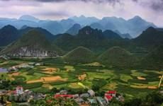 [Fotos] Belleza majestuosa de Ha Giang a inicios de verano