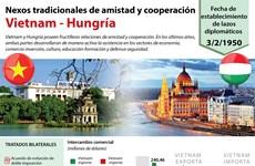 [Infografía] Relaciones tradicionales de amistad y cooperación Vietnam-Hungría