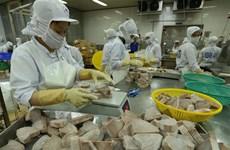 [Fotos] Empresas vietnamitas amplían exportaciones de atún a Oriente Medio