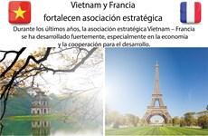 [Infografía] Vietnam y Francia fortalecen asociación estratégica