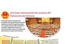[Infografía] Concluye sexto período de sesiones del Parlamento de Vietnam