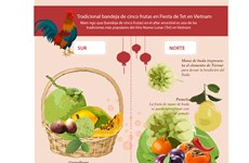 (Info) Tradicional bandeja de cinco frutas en Fiesta de Tet en Vietnam