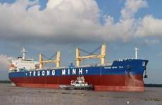 Vietnam aspira a promover potencialidades de empresas navieras nacionales