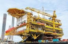 Reafirma empresa de ingeniería vietnamita su prestigio en el mundo