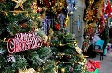 (Televisión) Atmósfera de alegría predomina grandes urbes vietnamitas en vísperas de Navidad