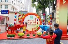 Descubra el nuevo aspecto de la Calle primaveral de libros en Hanoi