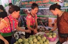 Promueve Vietnam desarrollo comercial en zonas montañosas e insulares