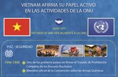 Vietnam afirma su papel activo en las actividades de la ONU