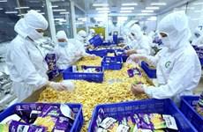 Vietnam trabaja por elevar calidad de productos