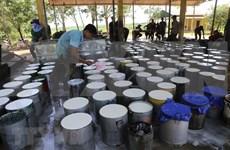 Fuerte aumento de exportaciones de caucho de Vietnam a Estados Unidos