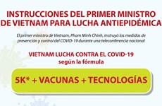 Instrucciones del Primer Ministro de Vietnam para lucha antiepidémica