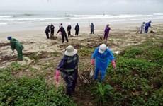 Publican por primera vez estudio sobre el medioambiente marino e insular de Vietnam