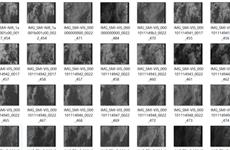 Capta imágenes experimentales satélite Micro Dragón de Vietnam