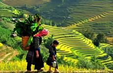 (Televisión) Promueven en Vietnam el turismo comunitario