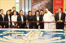 Promueven Vietnam y Emiratos Árabes Unidos cooperación económica