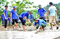 Jóvenes voluntarios de Vietnam, una historia gloriosa de 20 años