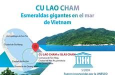 [Info] Cu Lao Cham, esmeraldas gigantes en el mar de Vietnam