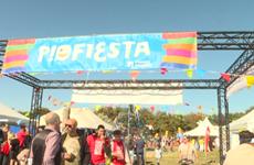(Televisión) Participa Vietnam en Festival de solidaridad Manifiesta en Bélgica