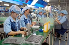 Proyectan empresas vietnamitas aumentar sus ventas