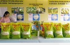 (Televisión) Reconocen al arroz de provincia vietnamita de Soc Trang como el mejor del mundo