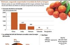 Vietnam, segundo exportador mundial de lichi y longan