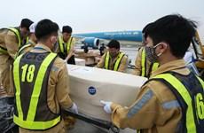 Repatrian restos de víctimas vietnamitas de la tragedia en Essex
