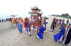 (Video) Festival divertido Cau Ngu en costa central de Vietnam