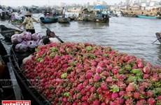 Desarrollan productos turísticos típicos de ciudad vietnamita de Can Tho