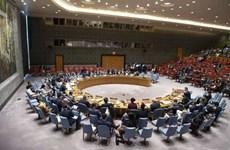 Vietnam: firme voluntad de incorporarse a misión internacional