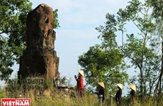 [Video] Misterioso pilar de piedra patrimonial en la pagoda Dam en Bac Ninh