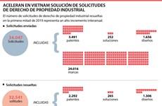 Aceleran en Vietnam solución de solicitudes de derecho de propiedad industrial