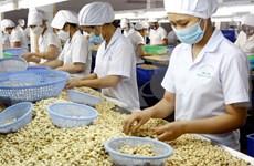 (Televisión) Alcanza sector agrosilvícola y acuícola de Vietnam superávit comercial récord