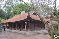 (Video) Exploran planchas xilográficas en la pagoda Vinh Nghiem
