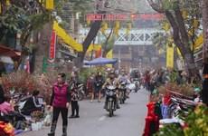 (Video) Mercado floral del Tet embellece el casco antiguo de Hanoi