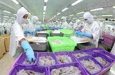 (Video) Aumenta producción acuícola de Vietnam en primera mitad de 2020