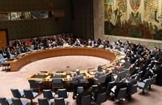 [Video] Vietnam cumple con éxito cargo del presidente del Consejo de Seguridad de Naciones Unidas