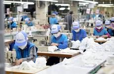 Sector textil de Vietnam enfrenta suspensión de pedidos de la UE y EE.UU. por el COVID-19