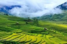 Hermosos lugares por descubrir en Mu Cang Chai de Vietnam