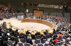 Afirma Vietnam su posición en Consejo de Seguridad de la ONU