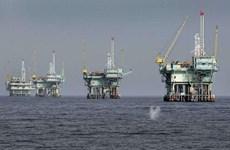 PetroVietnam aporta más mil 650 millones de dólares al presupuesto nacional
