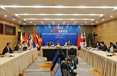 Vietnam y Japón presiden la reunión virtual de AFCDM+3