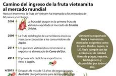 Camino del ingreso de la fruta vietnamita al mercado mundial