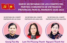 Nueve secretarias de los comités del Partido Comunista de Vietnam en provincias para el mandato 2020-2025